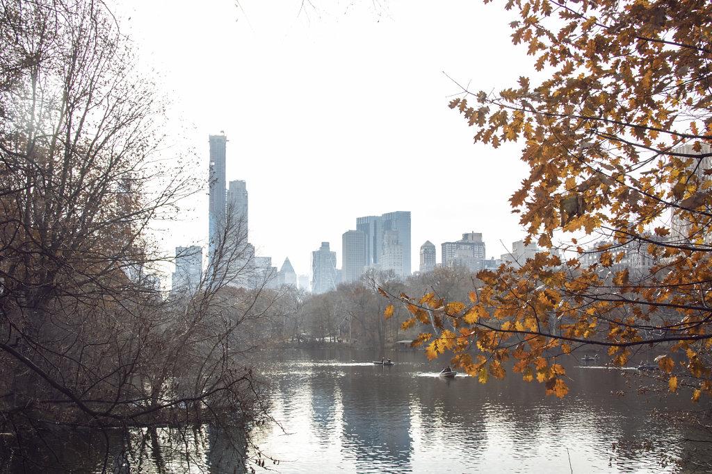 NY2-14.jpg