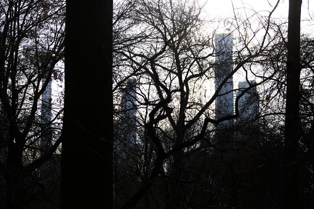 NY2-24.jpg